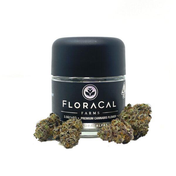 floracal flowerjar